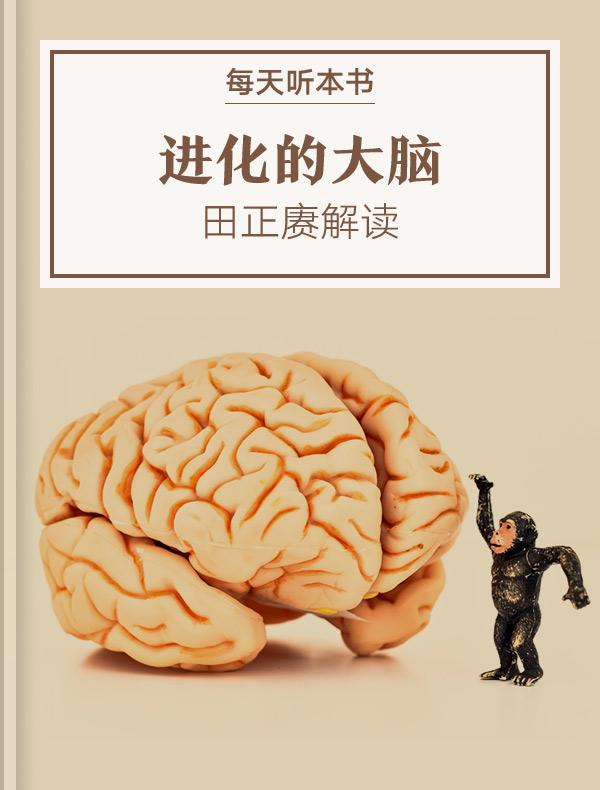 《进化的大脑》| 田正赓解读