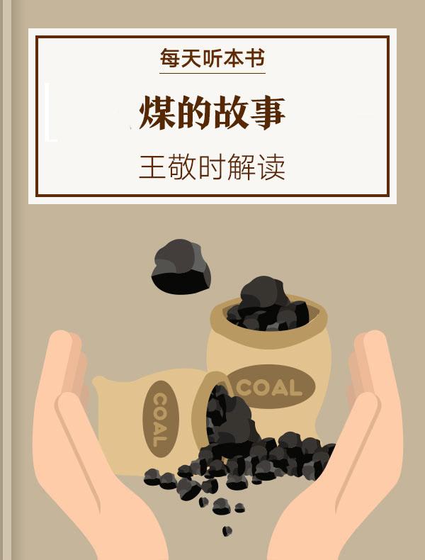 《煤的故事》| 王敬时解读