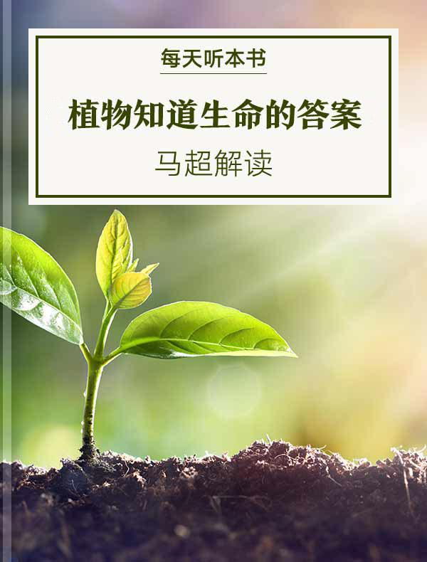 《植物知道生命的答案》| 马超解读