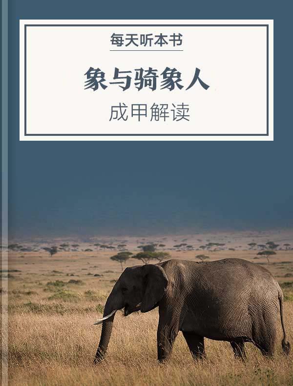 《象与骑象人》| 成甲解读