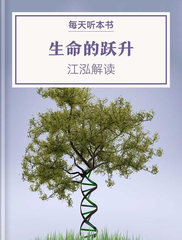 《生命的跃升》| 江泓解读