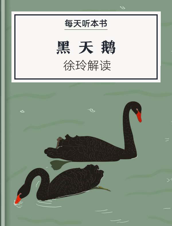 《黑天鹅》| 徐玲解读