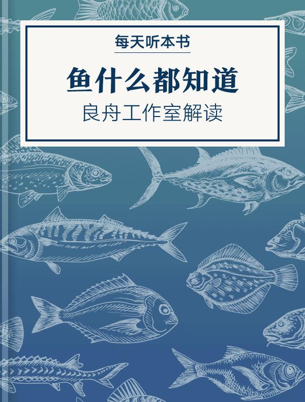 《鱼什么都知道》| 良舟工作室解读