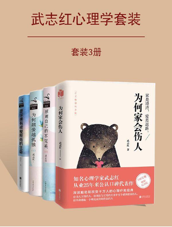 武志红心理学套装(全四册)