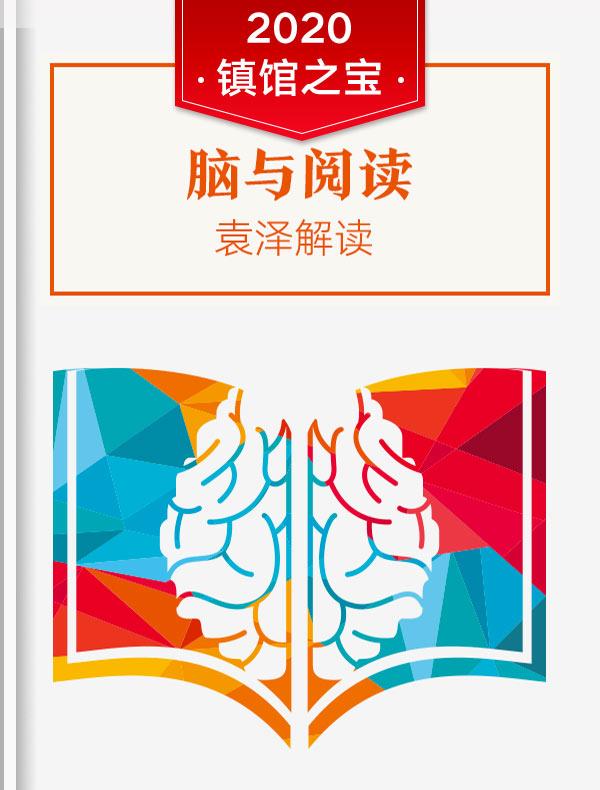 《脑与阅读》| 袁泽解读