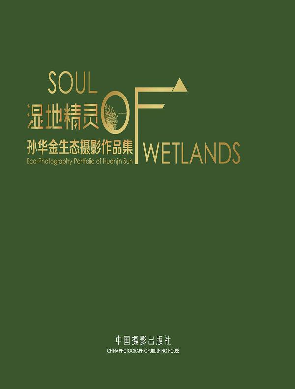 湿地精灵:孙华金生态摄影作品集